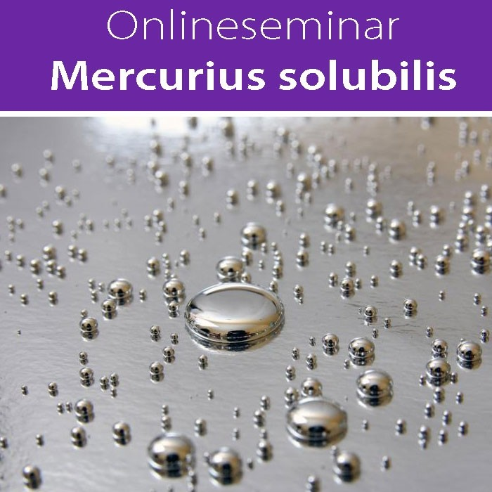 Mercurius solubilis in all seinen Facetten