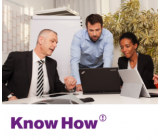 KnowHow-UseCase - Virtuelle Teams - rissip Onlinekurs